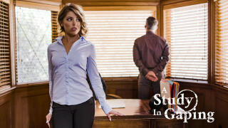 PureTaboo – A Study In Gaping – Adriana Chechik, Mick Blue